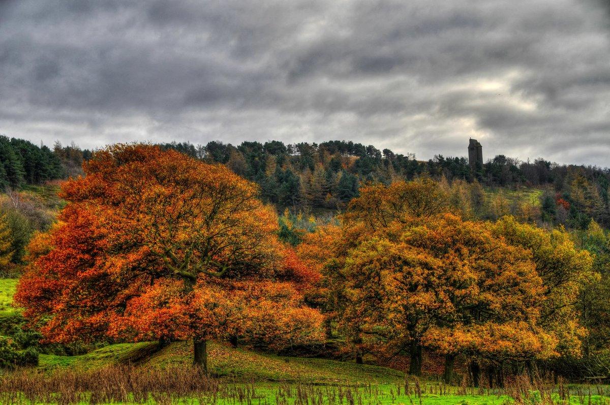 пасмурная осень фото яркие сочные