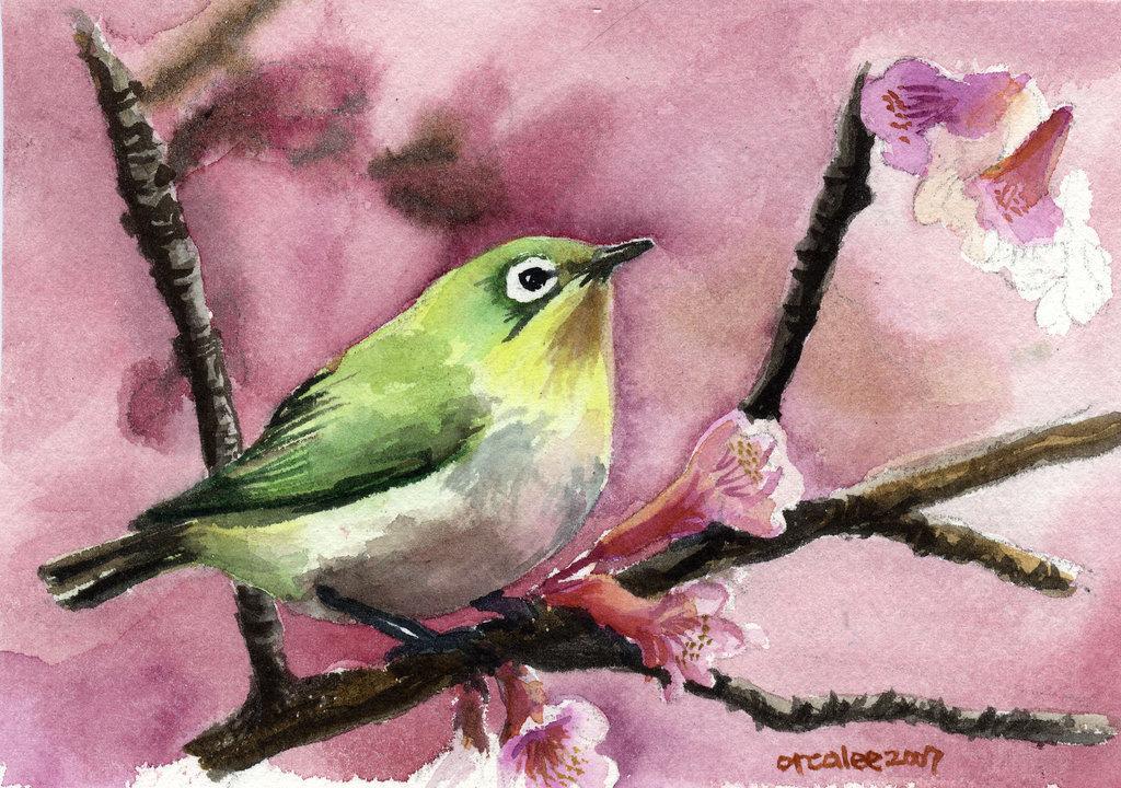 леди птица на ветке рисунок красками кооператив