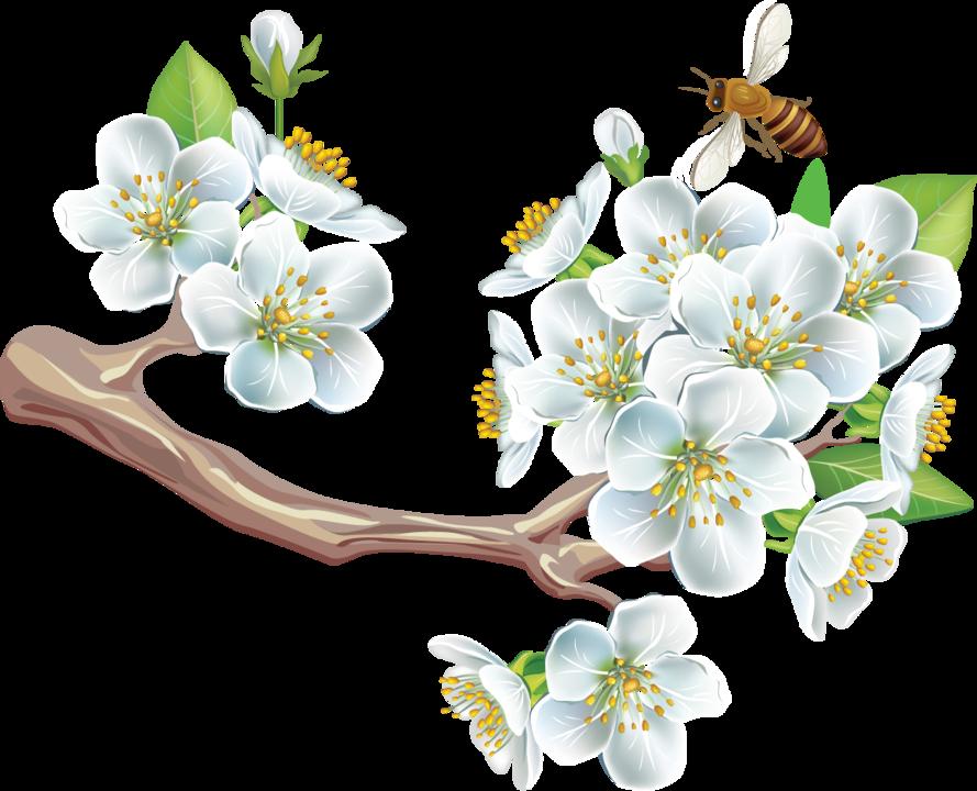 картинка символами весна