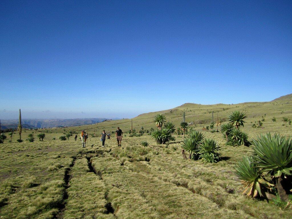 климат в эфиопии картинки тут фото этой