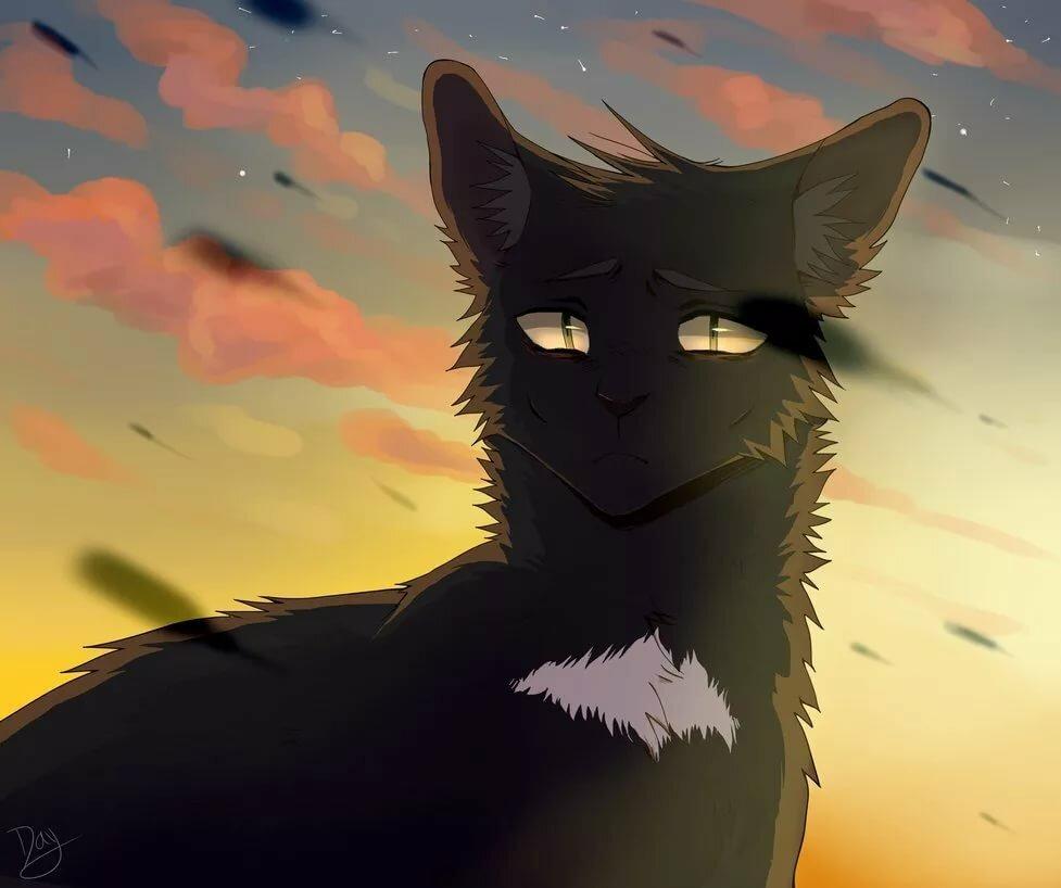 Здравствуйте спасибо, коты воители в картинках