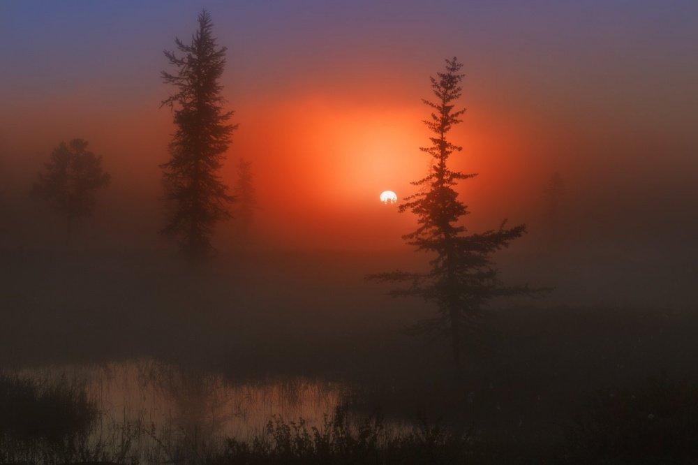 Дни становятся короче,  закаты — сказочнее