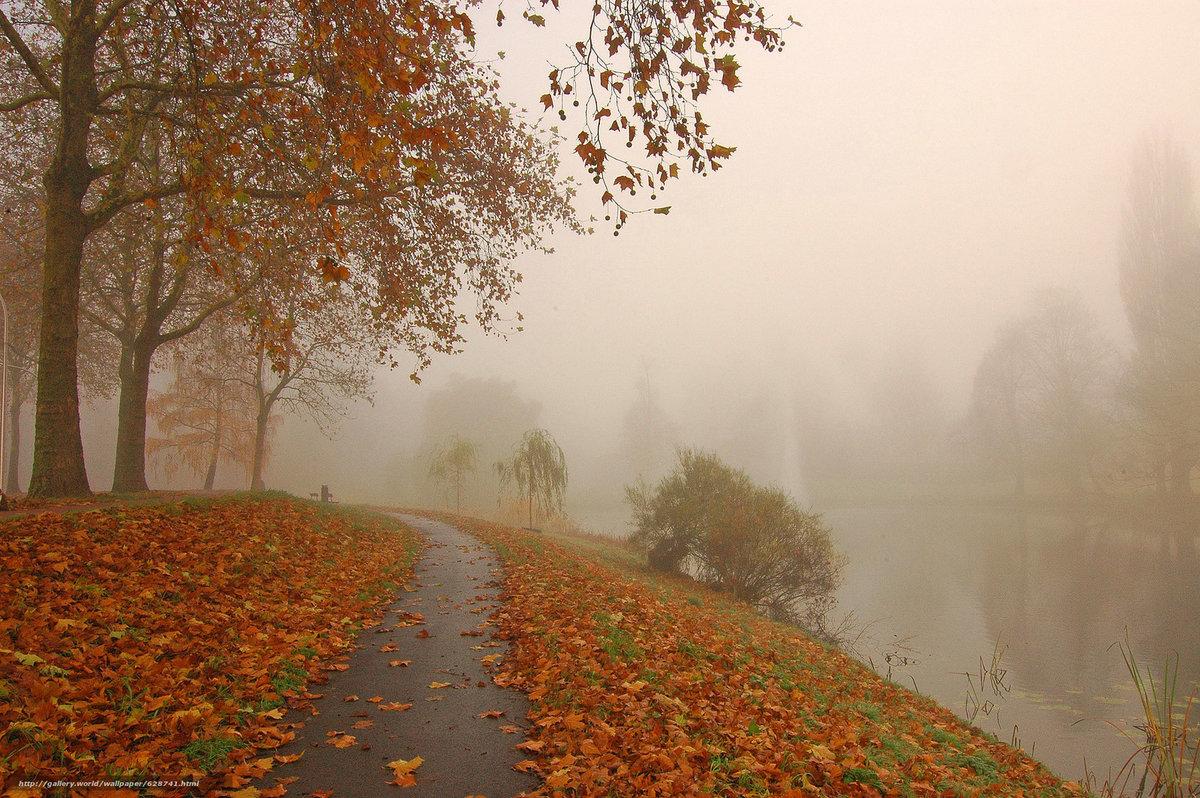 Туман по сути — это облако, существующее низко над поверÑностью. Он появляется, когда неизбежен контакт теплого, влажного воздуÑа с более Ñолодным.