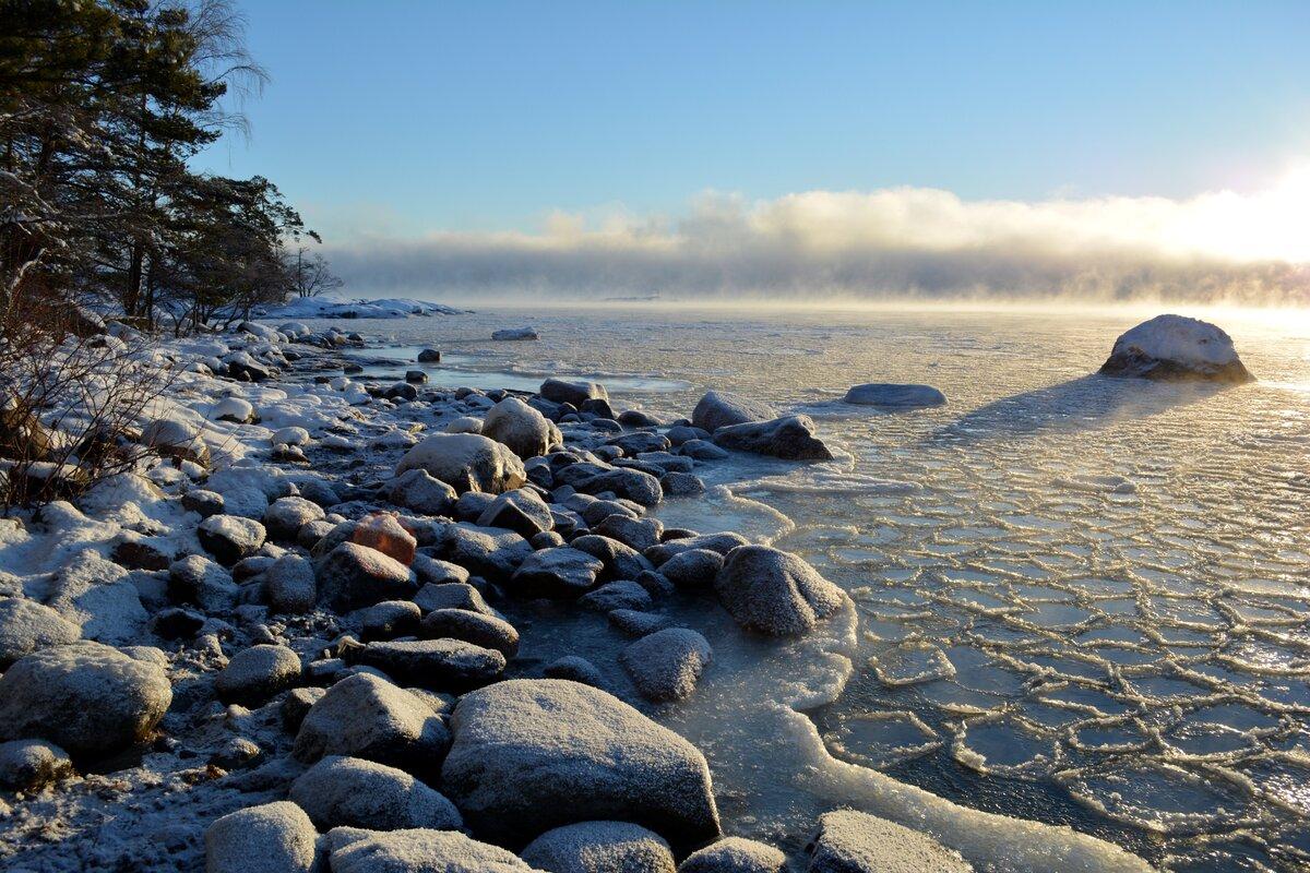 таксометра балтийское море картинки красивые цветочную