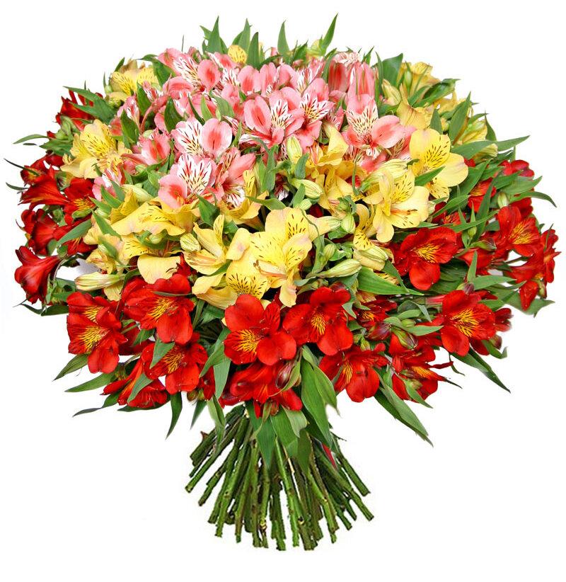 Поздравительная открытка в букет цветов