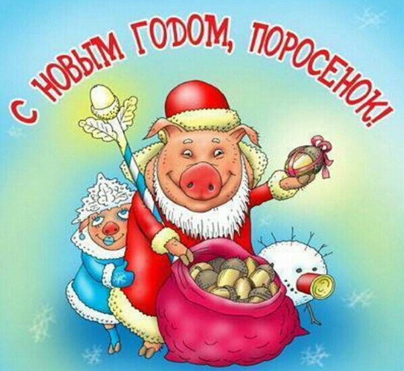 Годовщиной отношений, рисунки с приколами наступающего года свиньи