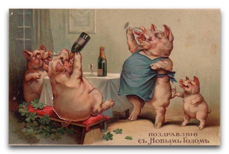 Прикольные открытка с новым годом свиньи, дню учителя