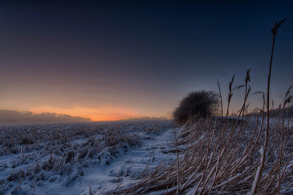 Картинки на поле зима