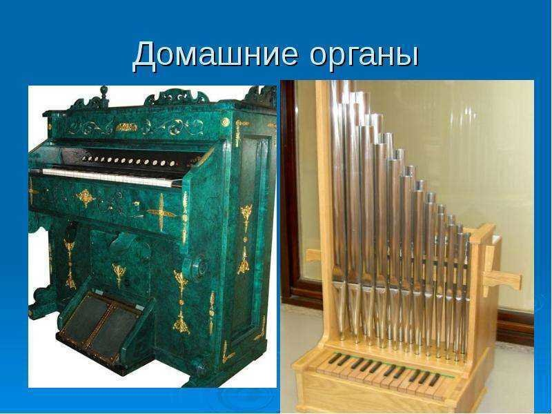 Устройство органа в картинках