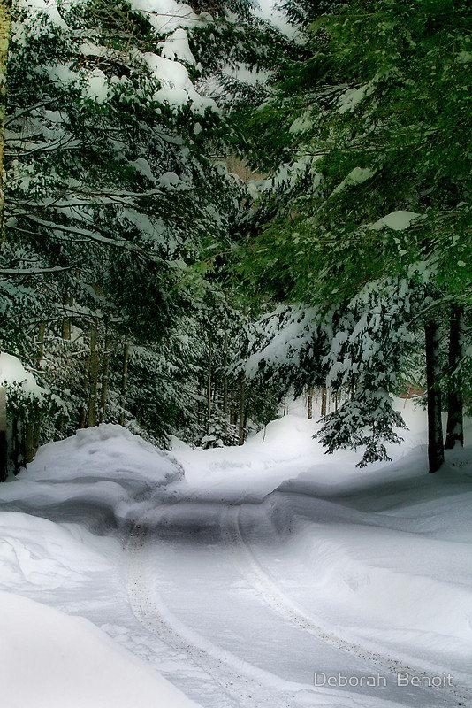 Картинки анимации, анимация картинка зима в лесу