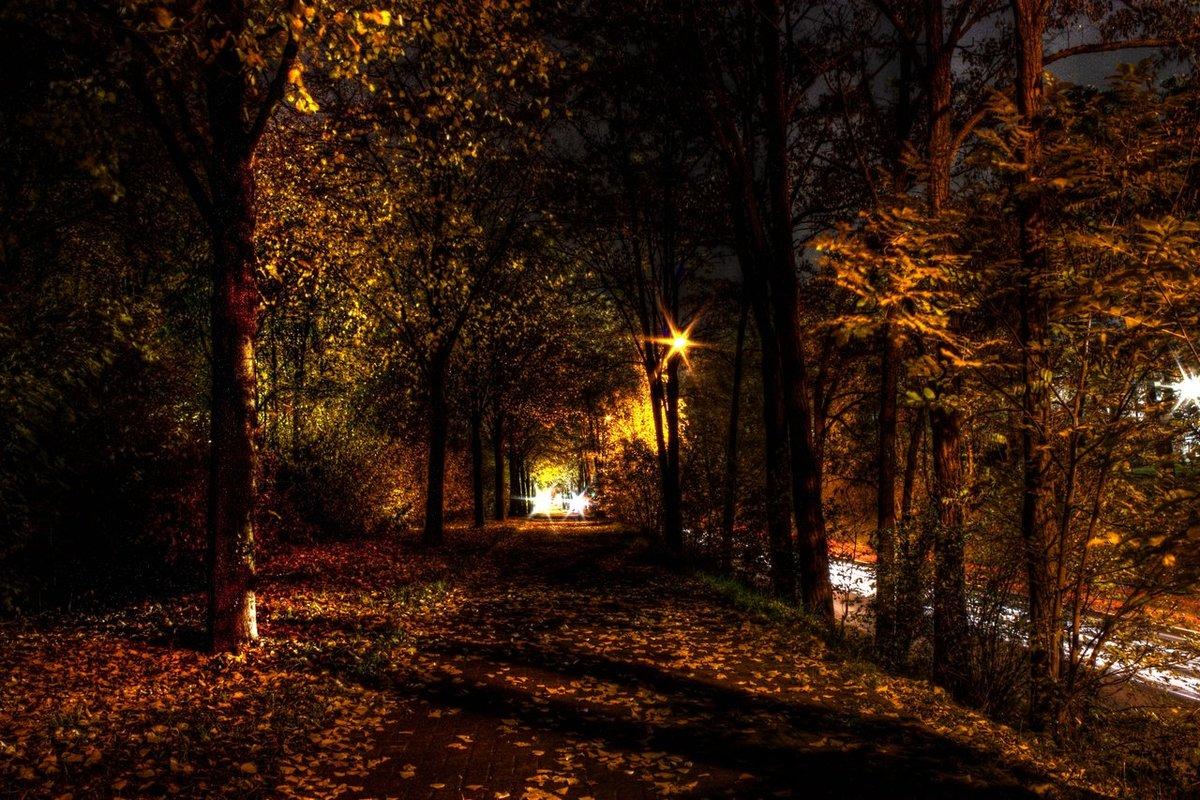 Вечер осень картинки фото