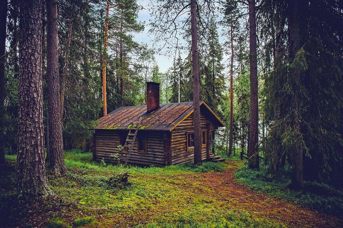Открытка, картинки дом в лесу летом
