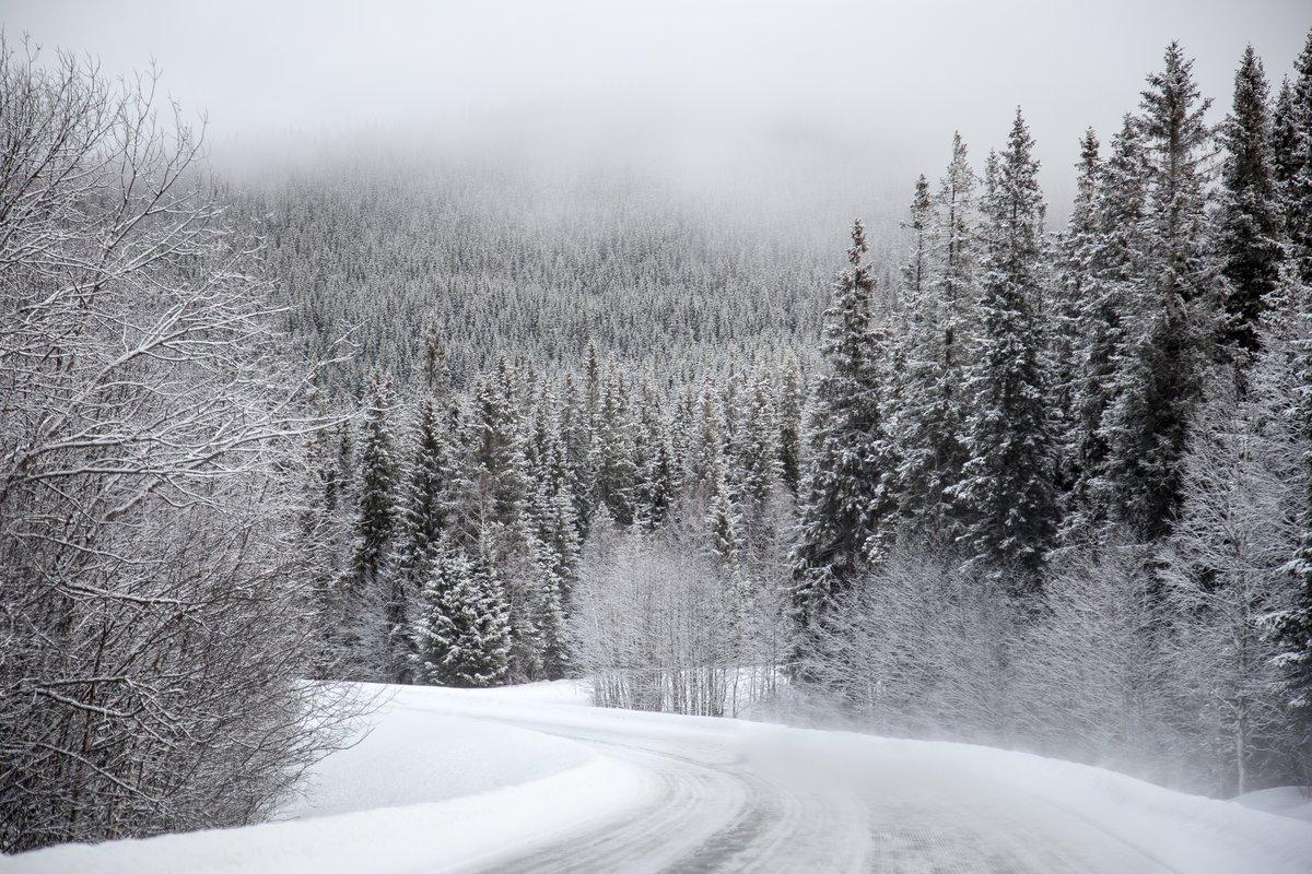 Снег картинки фото