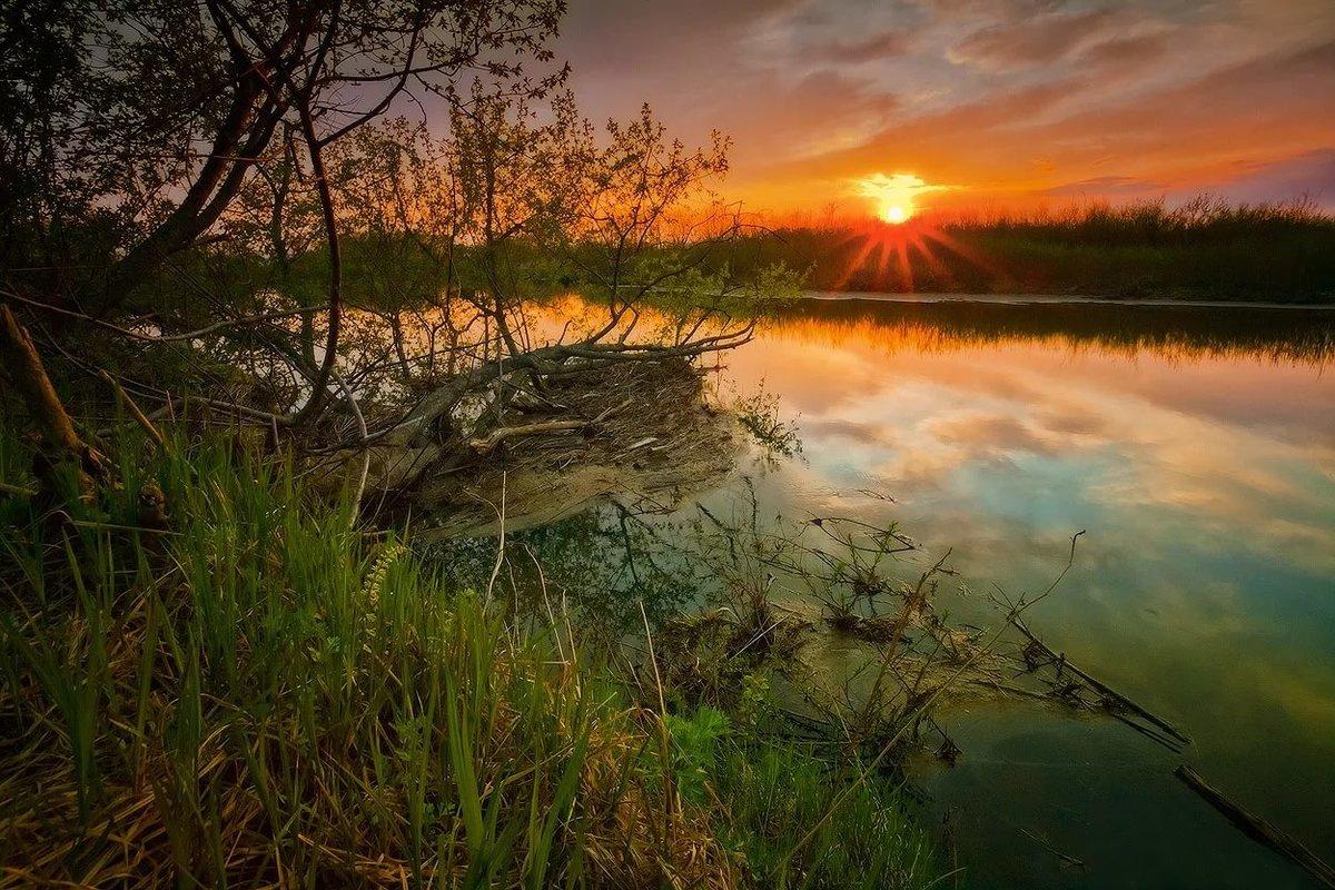 Как фотографировать восход солнца красиво фотографии молодых