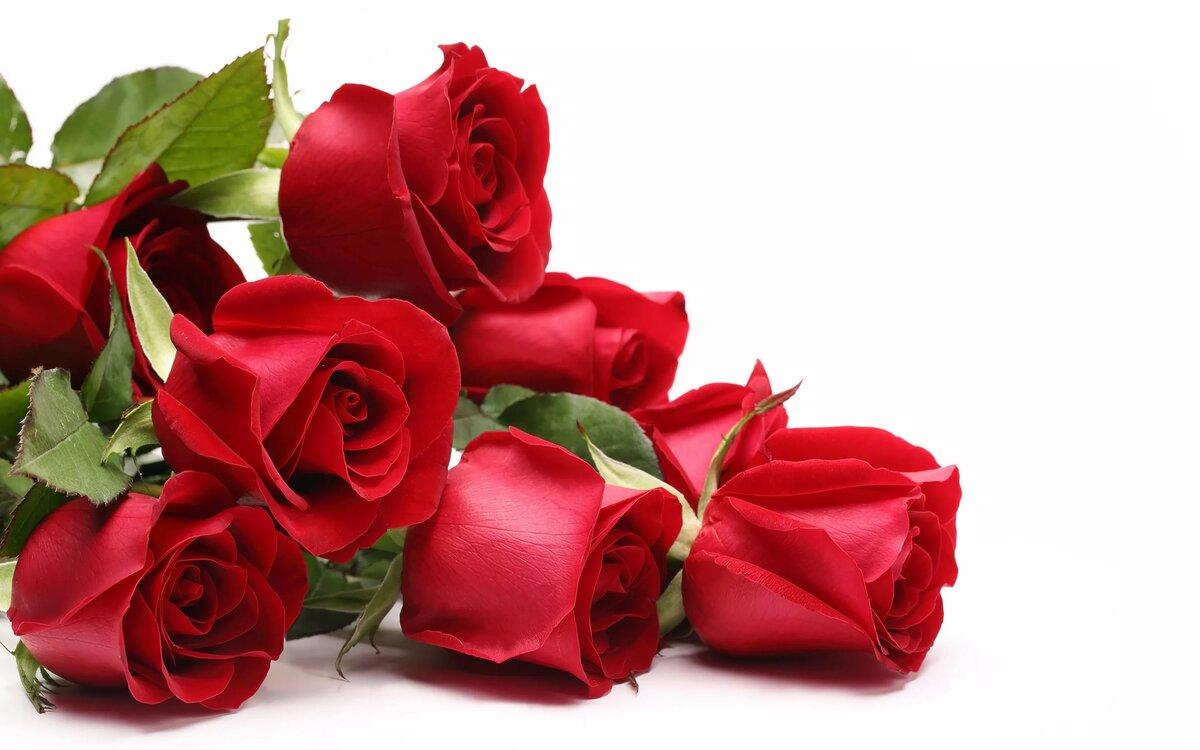 Открытки с цветами с надписями женщине, доброе утро желаю