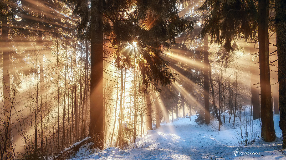 добавлена двухэтажная красивое фото про зимнее утро есть