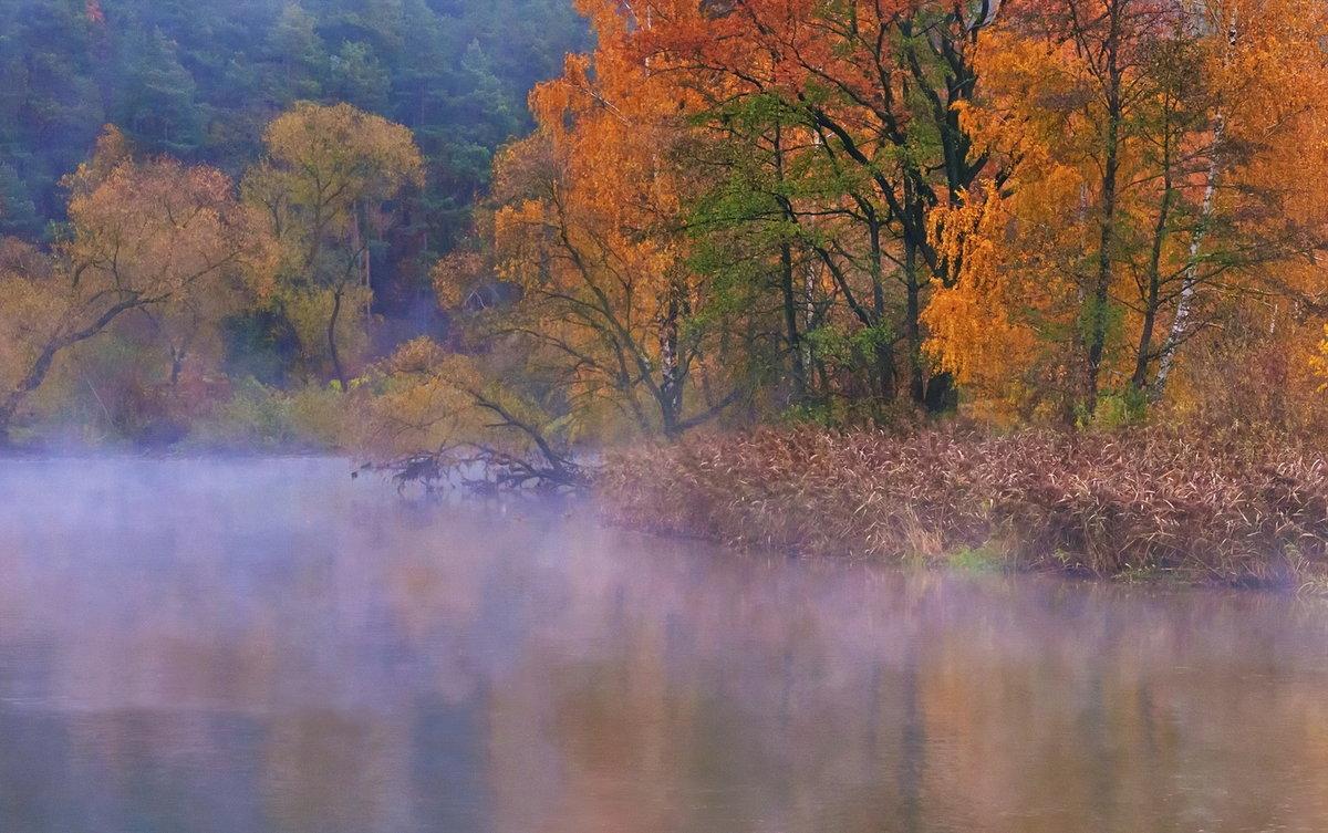 Чаще всего туманы образуются осенью – в это время Ð²Ð¾Ð·Ð´ÑƒÑ Ð¾Ñлаждается значительно быстрее, нежели вода или земля.