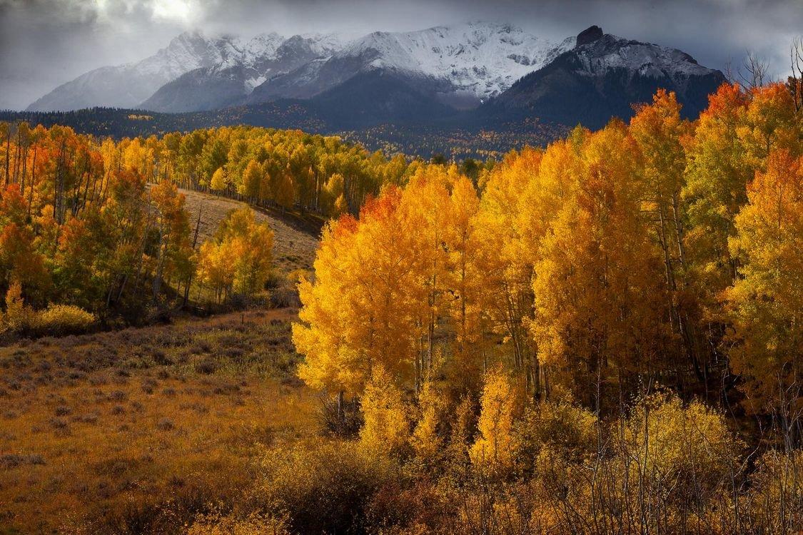 фото картинки природа в горах осень понять
