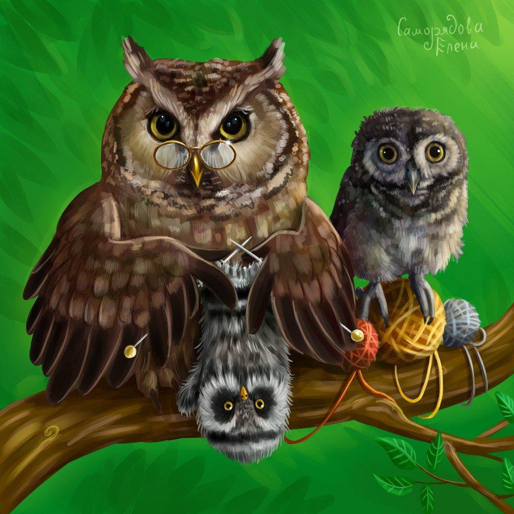 картинки семья совушек в природе укладки смотрятся очень