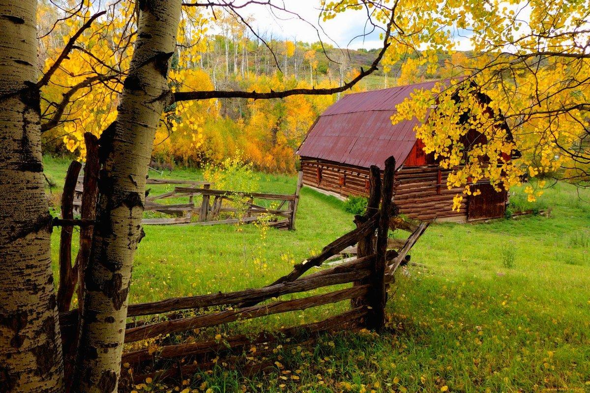 Дарю, открытки деревня осенью