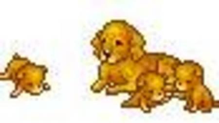 Движущиеся картинки с собаками