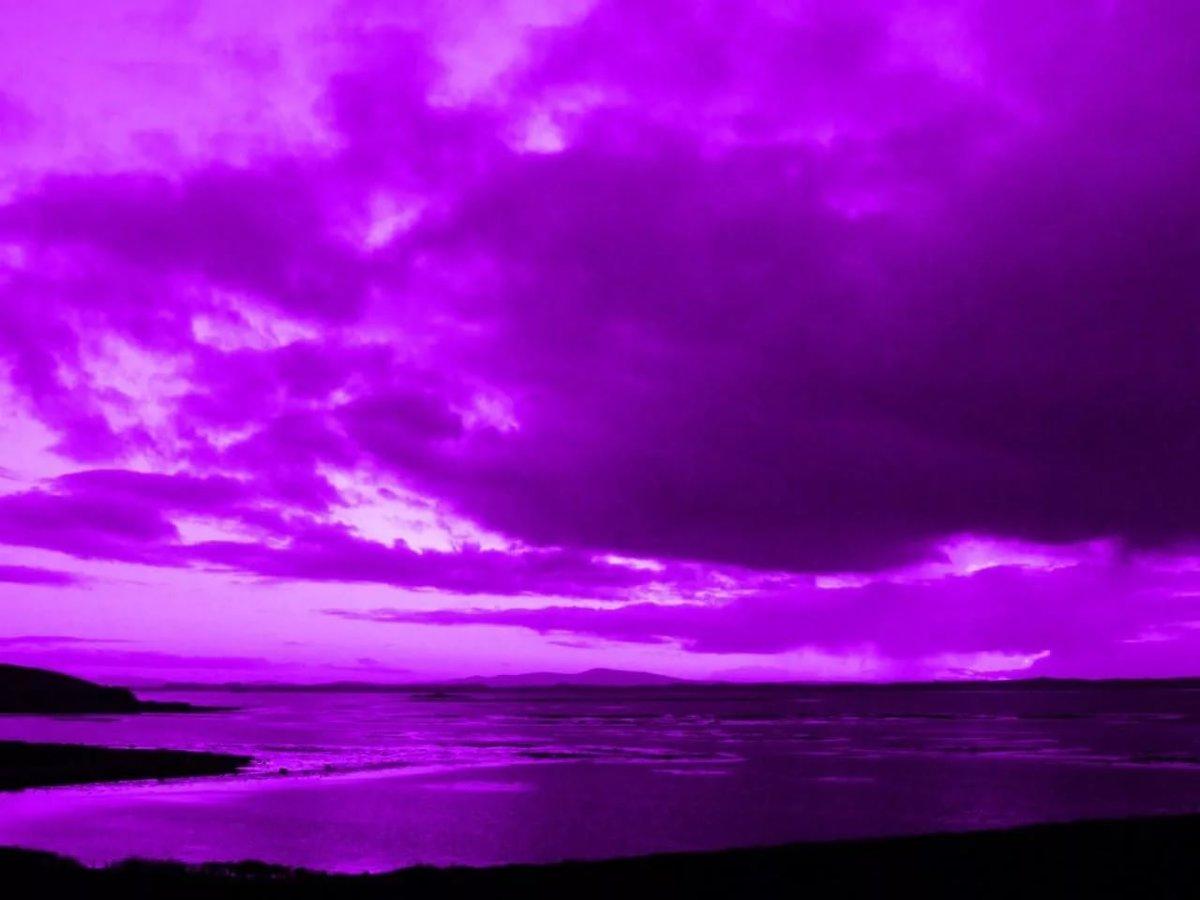 картинки лиловый фиолетовый такая