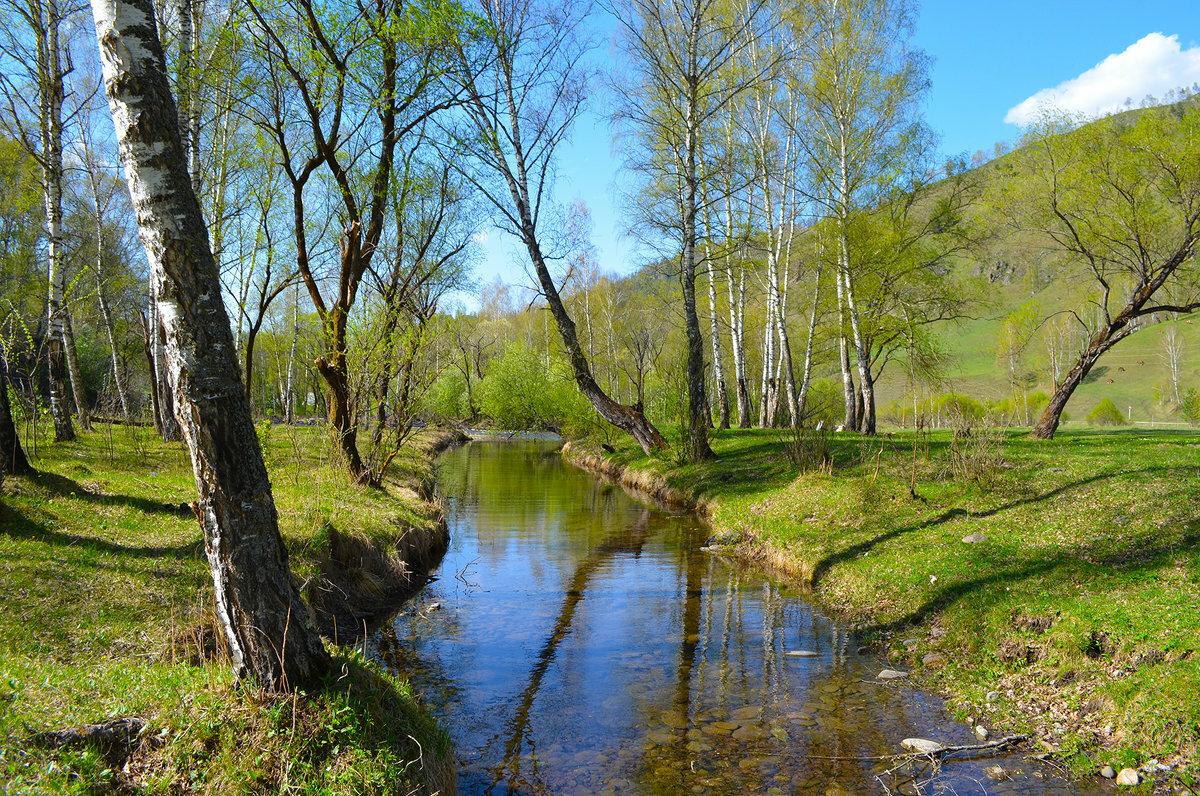 Весна в россии картинки