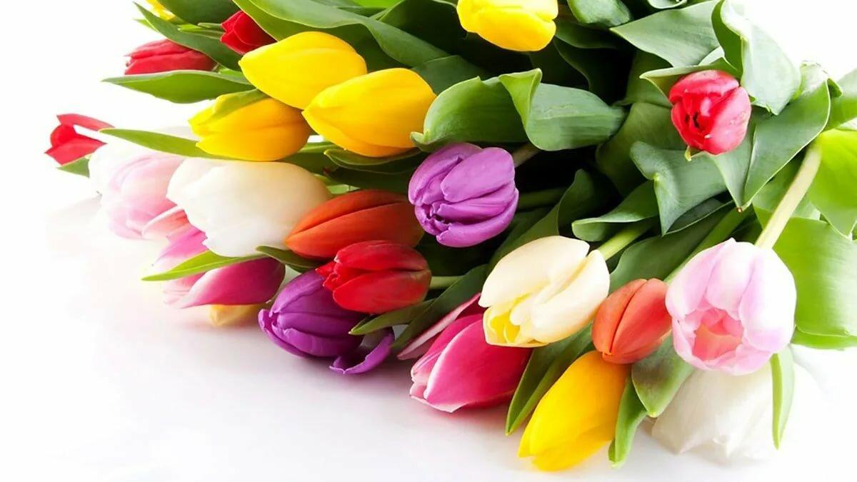 Яркая открытка с цветами для милых дам, приехали открытки