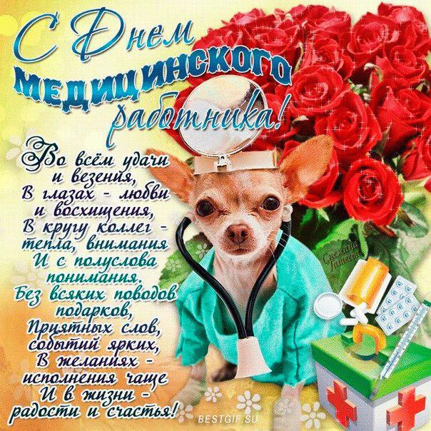 такому принципу поздравления ветеринарам к новому году что