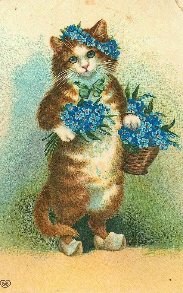Венчанием открытки, открытка с рисунком котика
