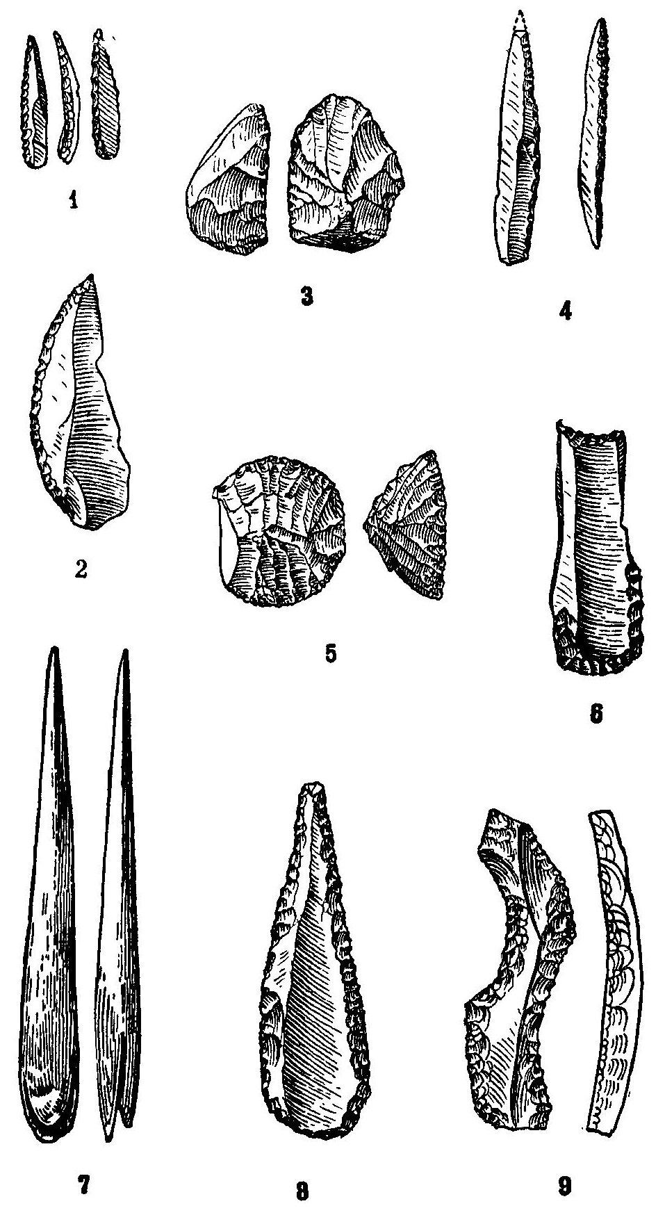 Всемирная история — Том I — Глава II — 1. Человек верхнего палеолита — читать онлайн