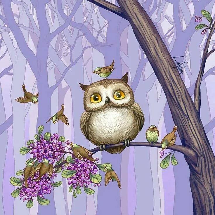 Рисунки веселые совы, картинки бухгалтерии праздники