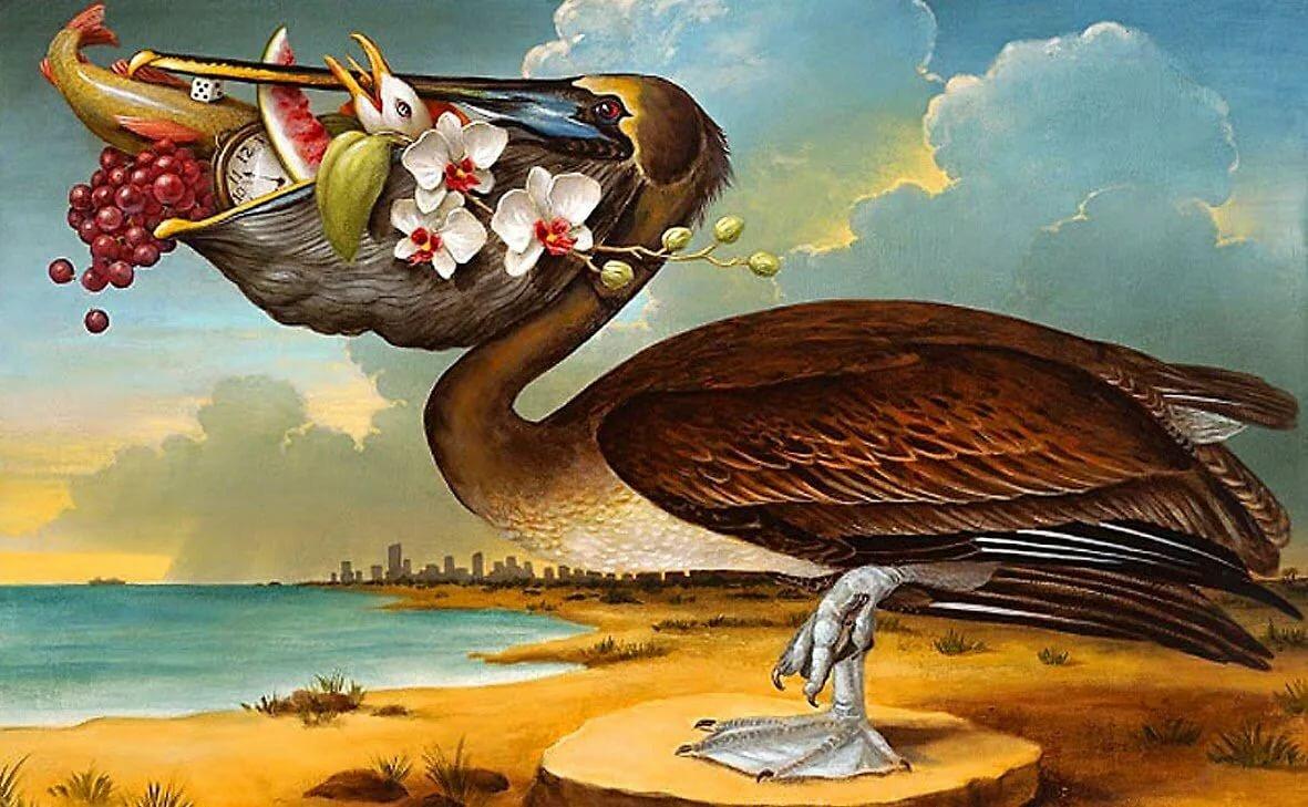 Картинка с пеликаном с деньгами в клюве