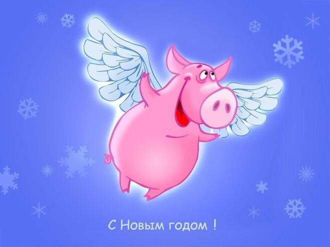 Открытка работнику, смешные открытка с новым годом свиньи