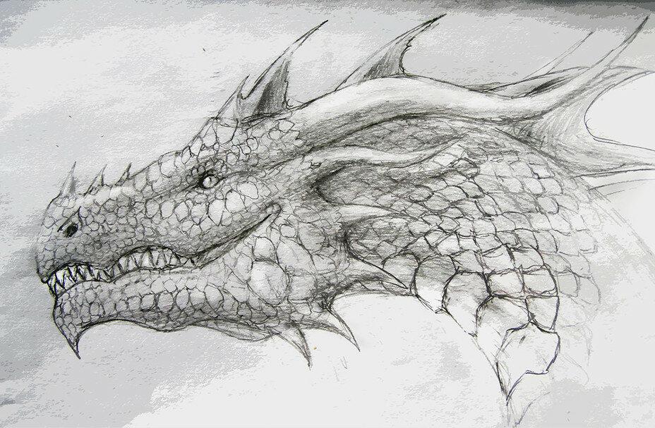 Знак, картинки драконов красивые для срисовки