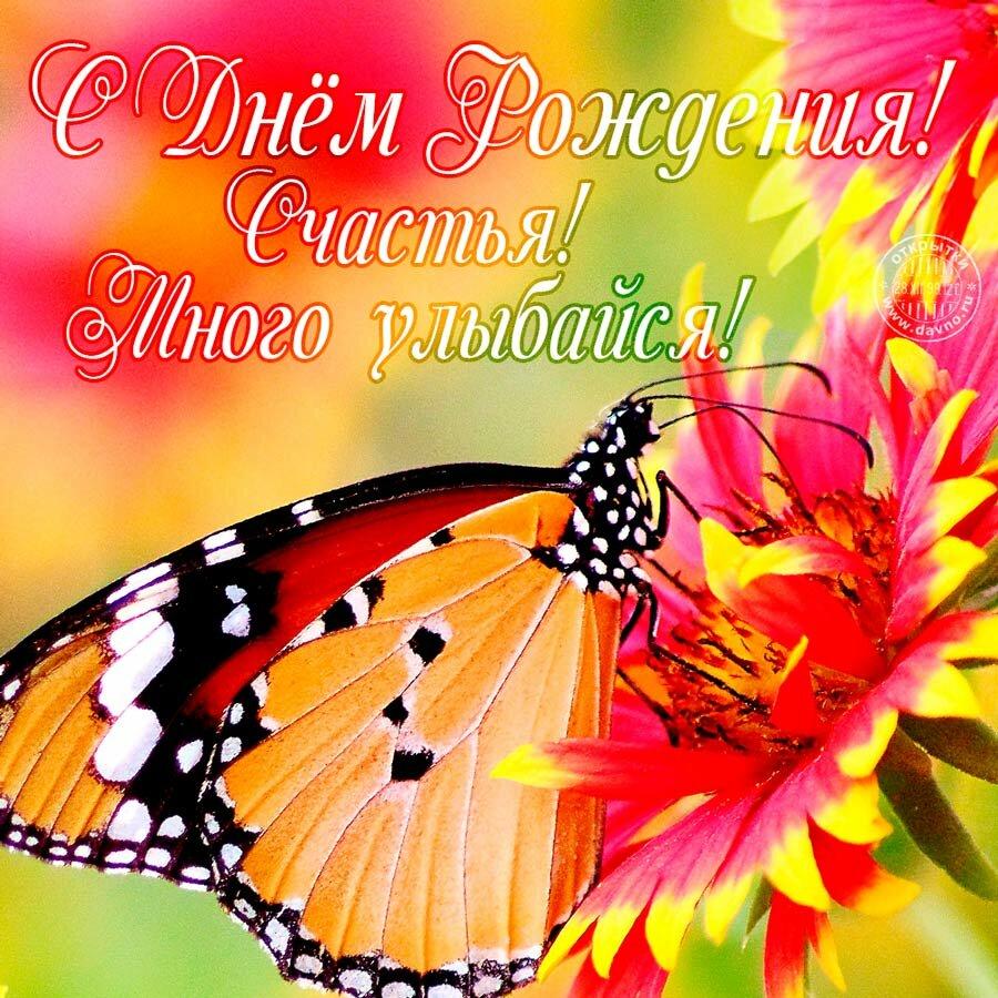 Цветочки бабочки на открытки