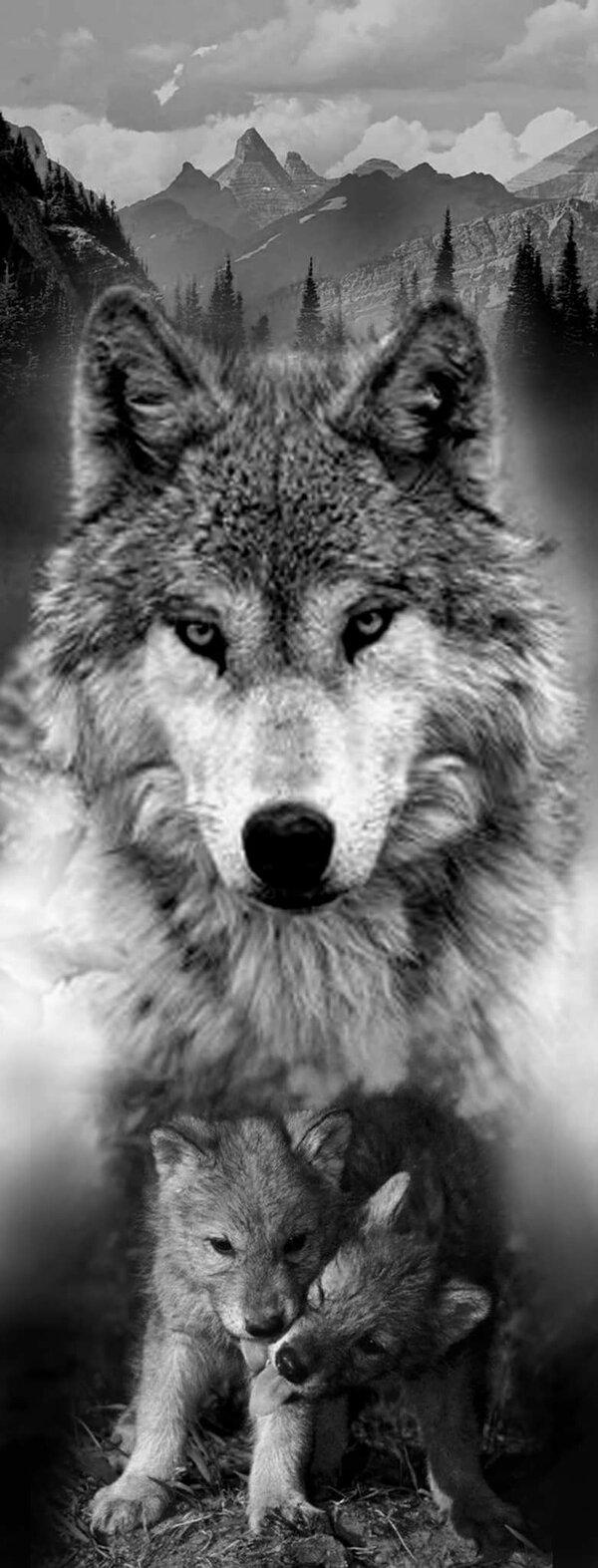 картинки тату волчица с волчатами зависимости спектакля