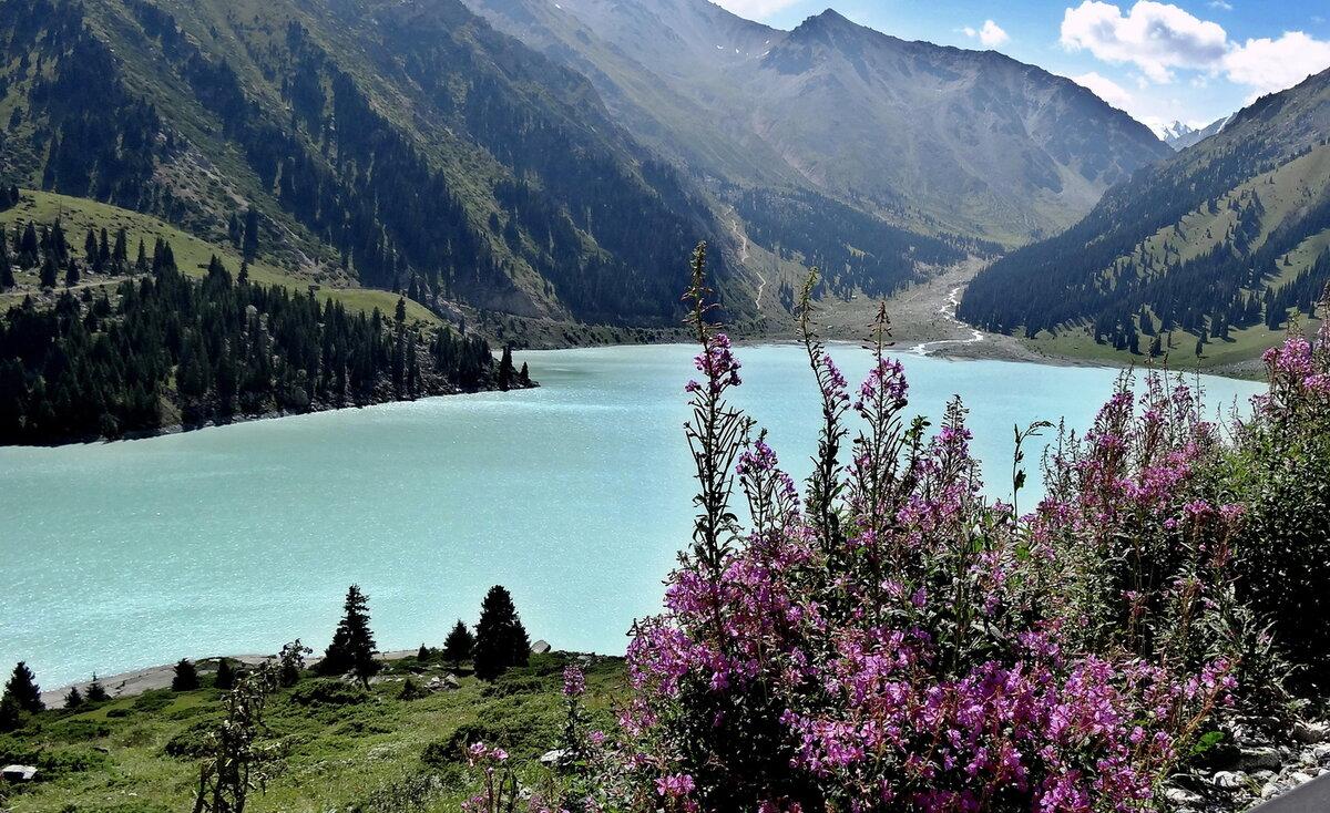 продаж внутреннем лето в казахстане картинки что