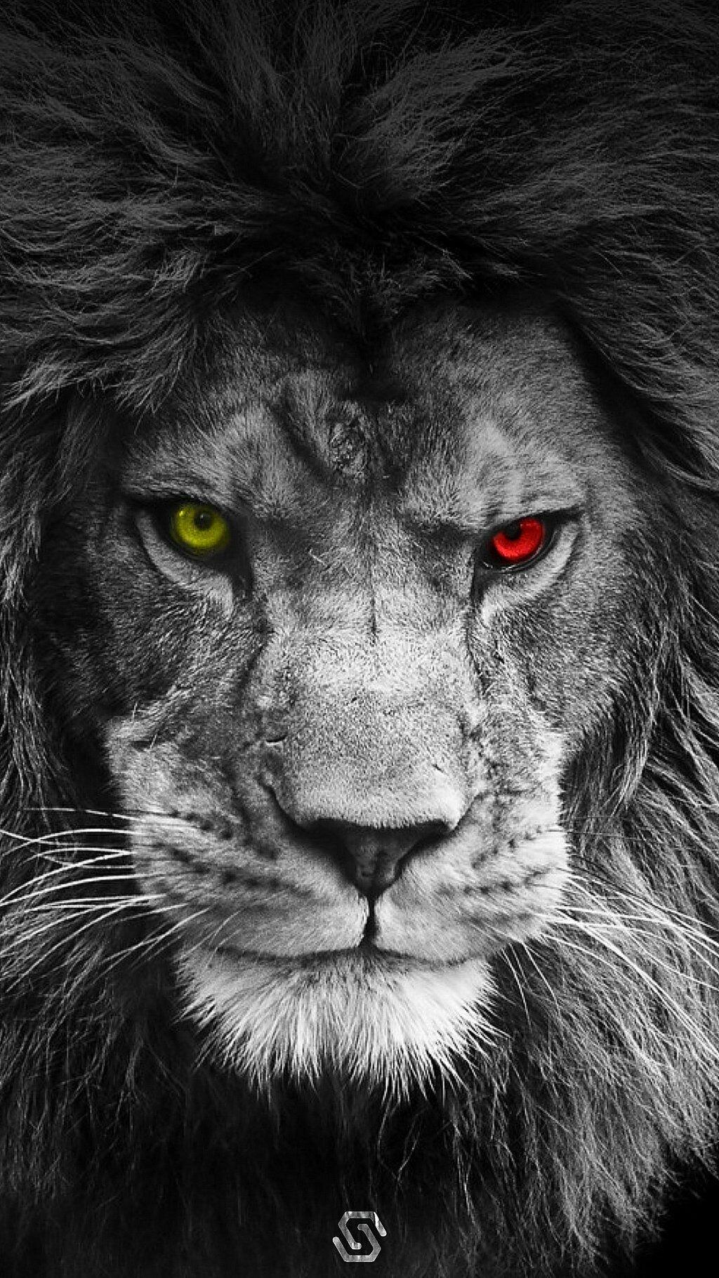 Картинка крутые лев