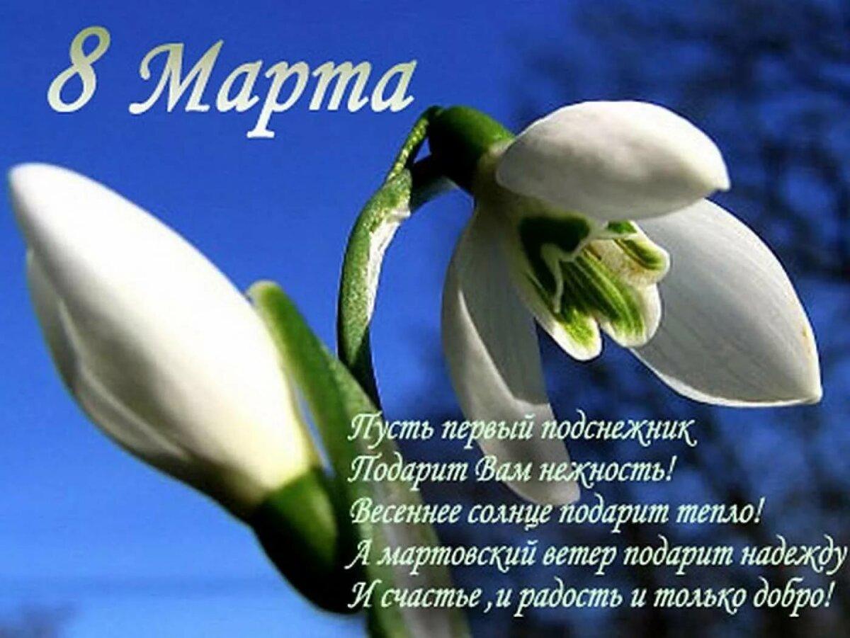 Красивое поздравление с 8 мартом стихами