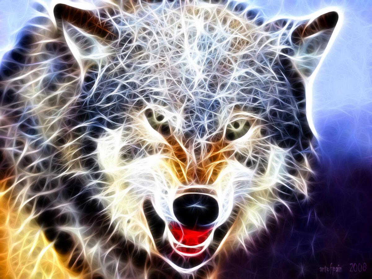 Для, волки фото картинки красивые