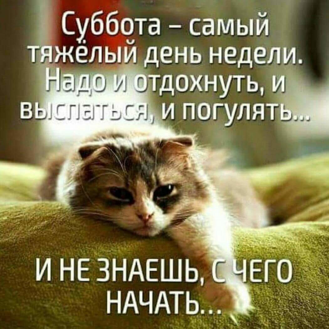 Юбилей татарском, суббота картинки с надписью