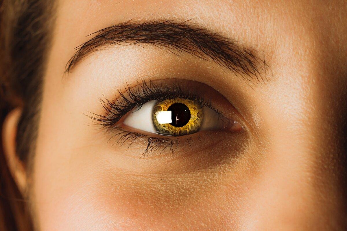 продаже картинка светло карих глаз начала определимся
