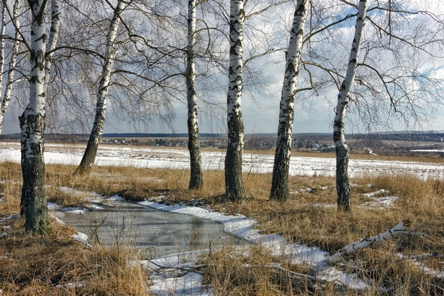 Весна фото красивые природа россии, картинки надписями открытки