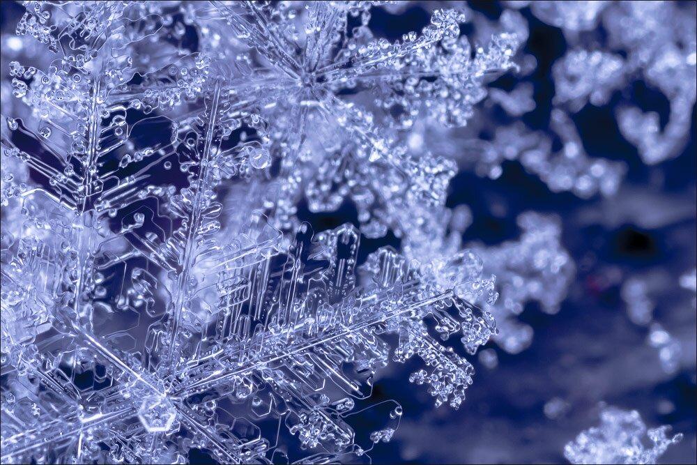 Снежинки картинки фото, знаю