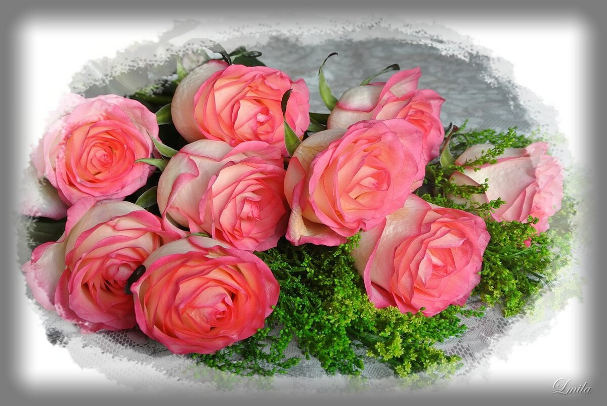 Флэш открытка с розами