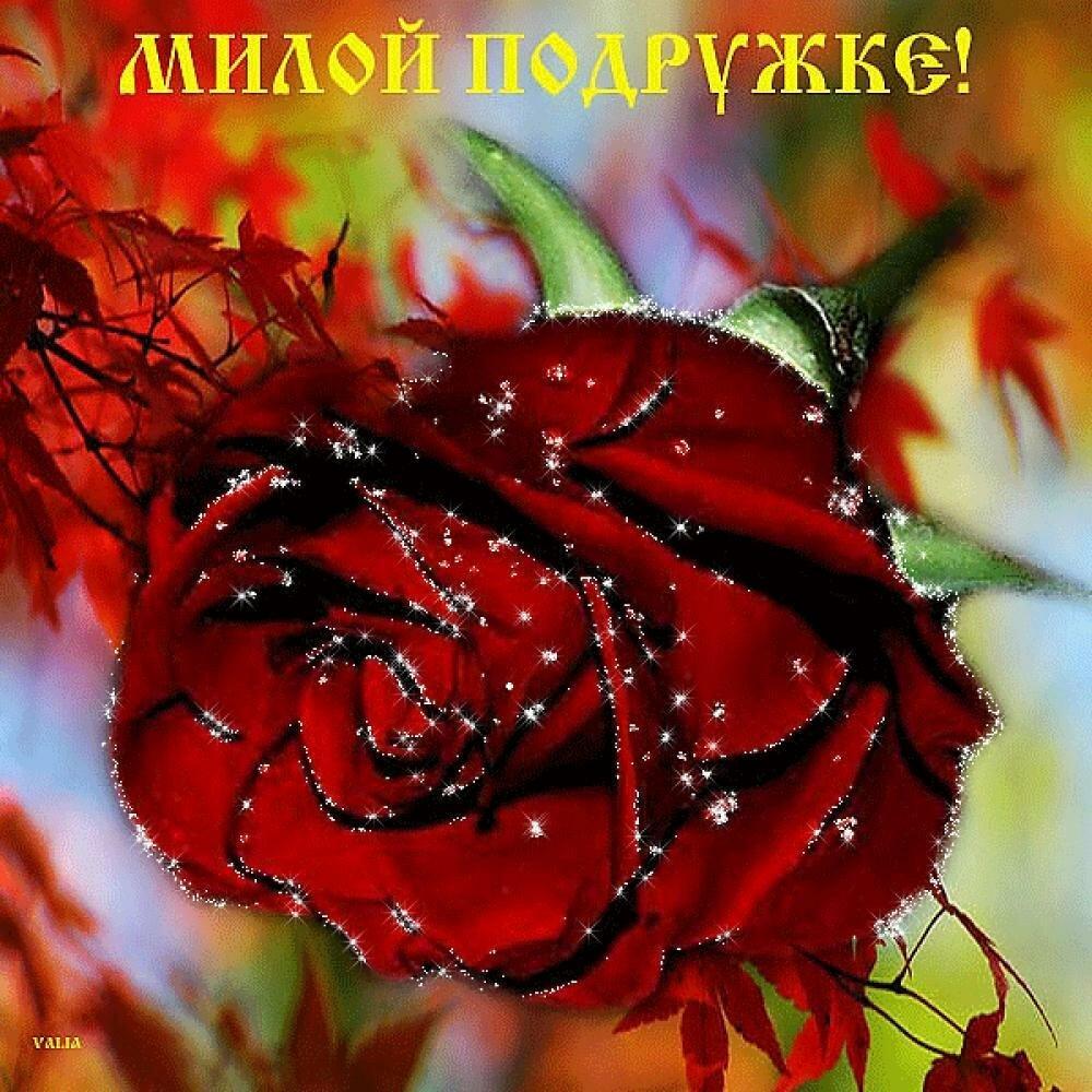 Открытки, открытки музыкальные другу цветы