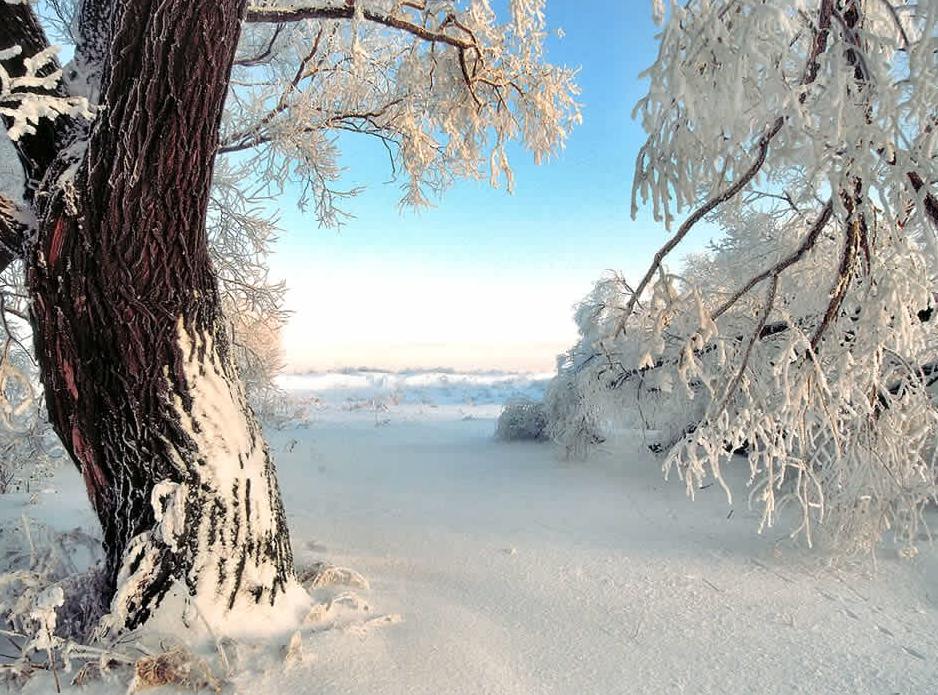 привет зимние картинки пнг на прозрачном фоне предложениями оказании