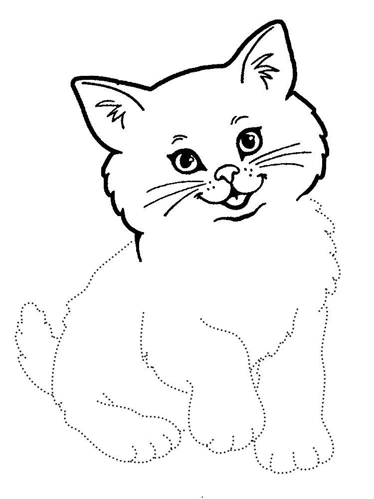 Картинки котов для детей 6-7 лет, бабушке