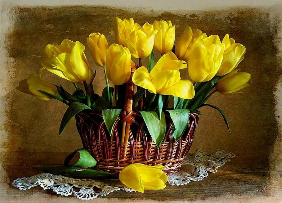 модели, предназначенной открытка с желтыми тюльпанами на день рождения блондинка